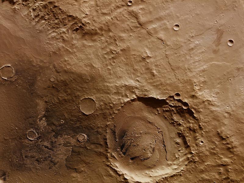 На Марсе нашли останки неизвестной формы жизни