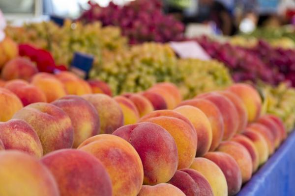 Россельхознадзор запретил ввоз овощей и фруктов из Египта
