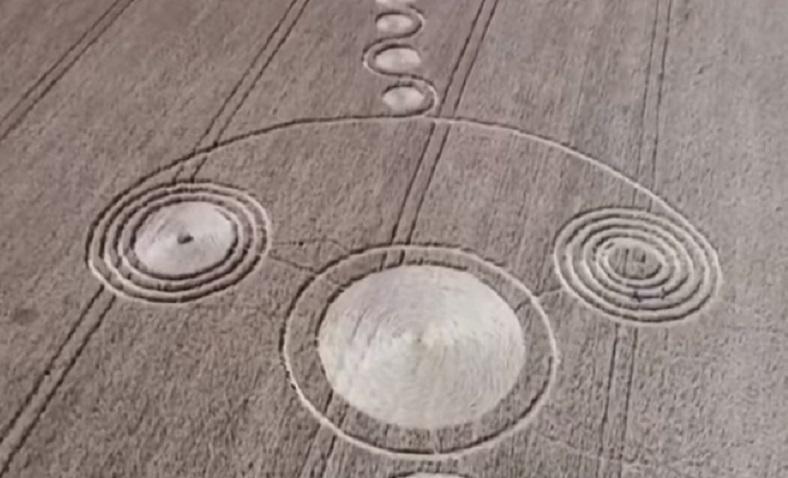 Загадочные пиктограммы на пшеничном поле в Краснодарском крае заинтересовали уфологов