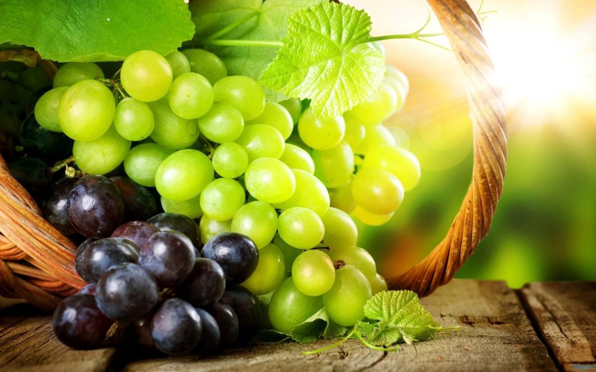 В Кисловодске состоится праздник молодого вина