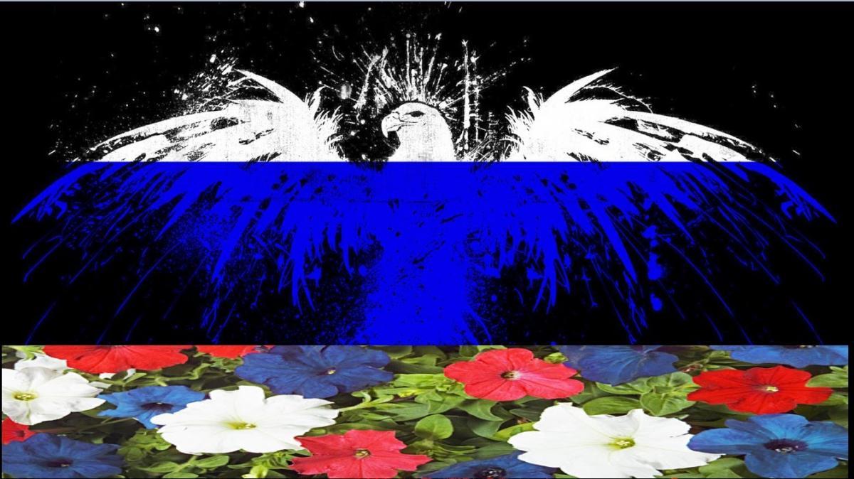 Патриотичные видеопоздравления с Днем России 12 июня 2018: красивые песни ко Дню независимости России