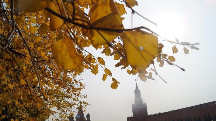 Грядут холода: жителей Москвы предупредили о предстоящих заморозках