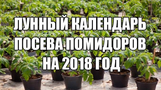 Благоприятные дни для посадки помидор на рассаду в марте 2018 года: таблица лунного календаря