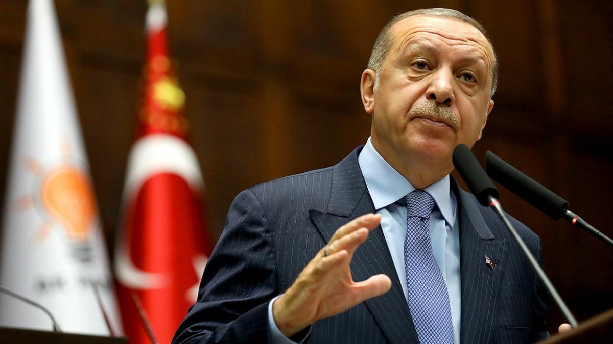 Эрдоган подверг критике власти Франции за разгон протестующих