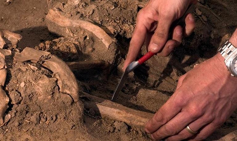 Древние останки, найденные в Марокко, переписали всю историю человечества