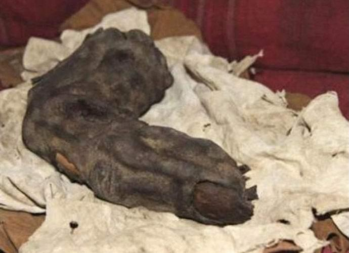 Палец великана обнаружен в Египте