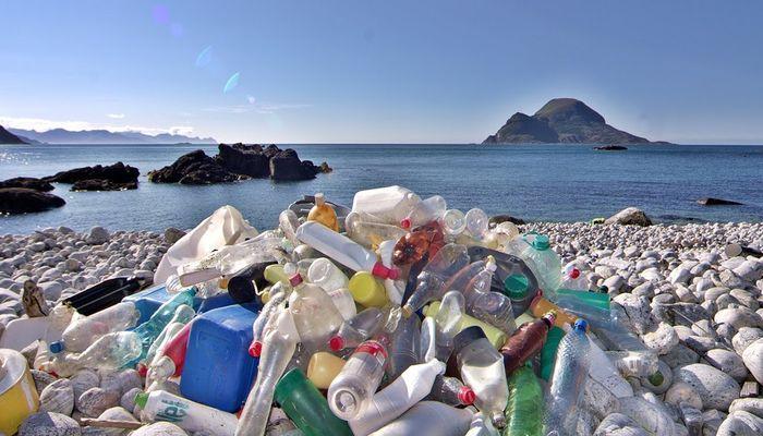 Пластик может стать катастрофой для планеты — учёные