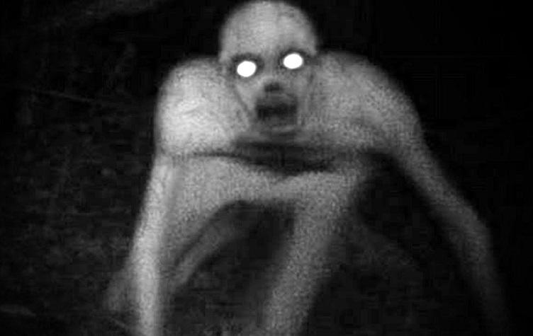 Мифическое существо помберо сняли на видео в Парагвае