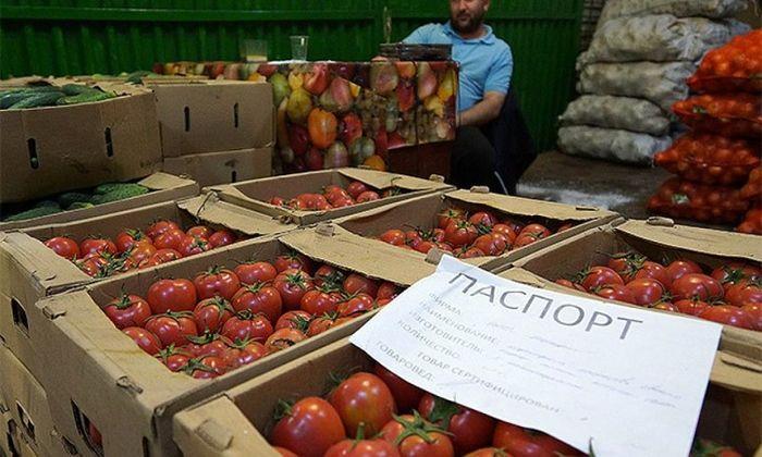 Россия может запретить ввоз растительной продукции через Беларусь