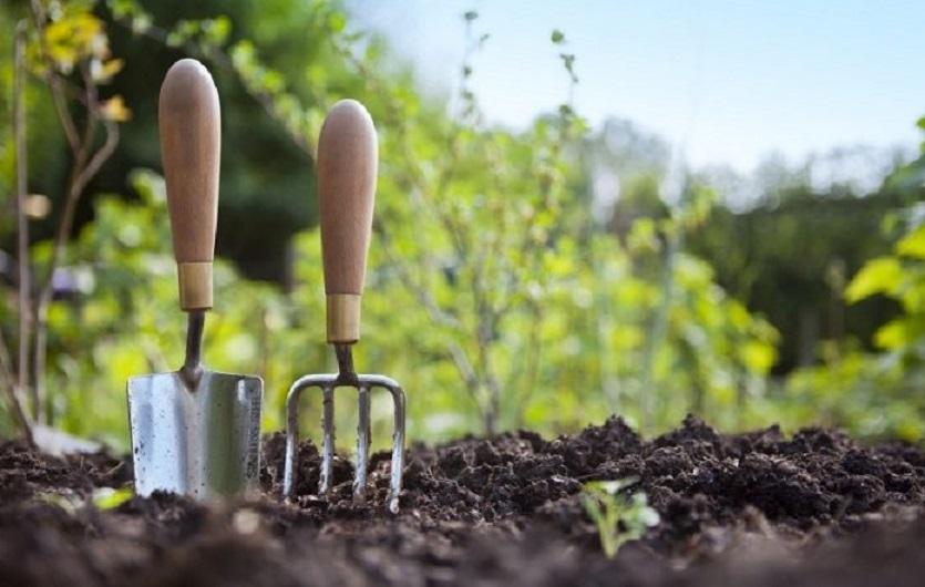 Лунный посевной календарь для садоводов и огородников на вторую половину апреля 2019 года: благоприятные и неблагоприятные дни