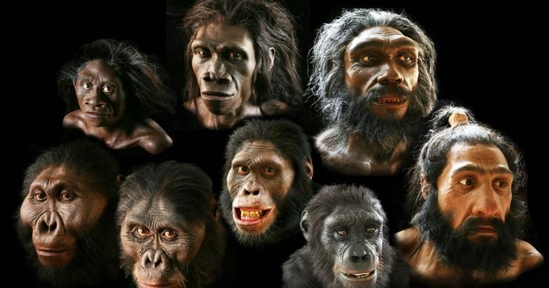 Предки людей скрещивались с неизвестным науке видом - ученые
