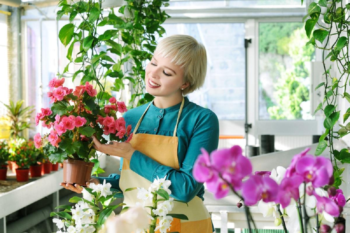 Комнатные цветы по знаку Зодиака, которые притянут счастье, успех и материальное благополучие