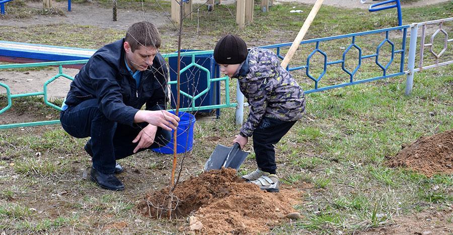 Жители Ростова помогли озеленить город в выходные