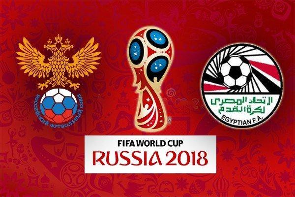 Выдра Гарри предсказал победителя матча между Россией и Египтом