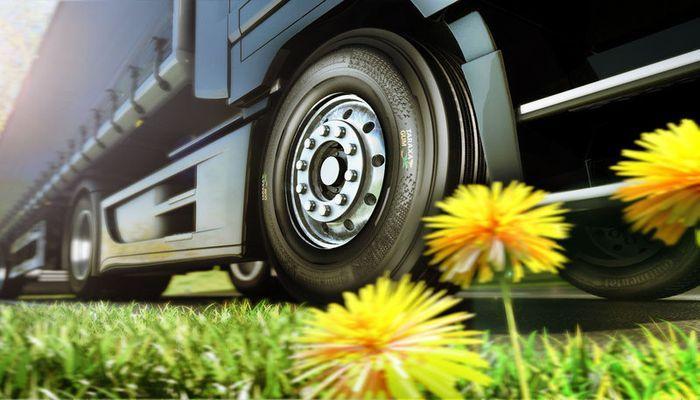 Немецкий концерн Continental решил выпускать шины из русских одуванчиков