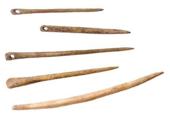 На Алтае археологи нашли самуюю древнюю иглу