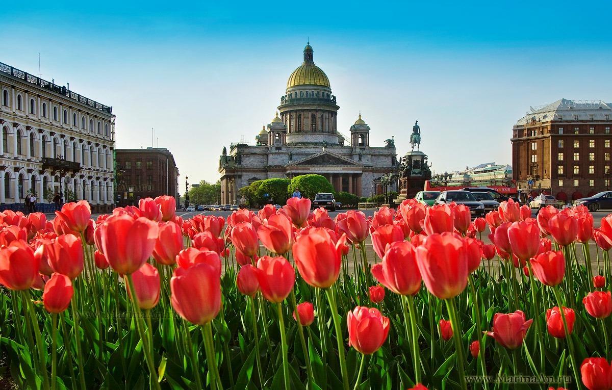 День города в Санкт-Петербурге 2017: программа мероприятий, салют - будет ли