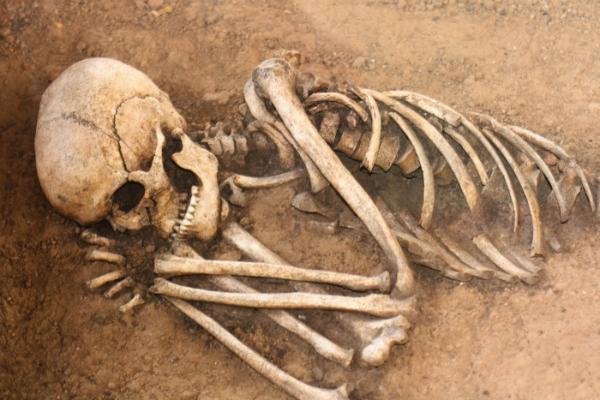 НаМарсе 3-метровый скелет мертвого гуманоида открыл факты, пугающие ученых