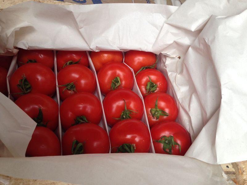На Ставрополье изъяли почти тонну турецких томатов