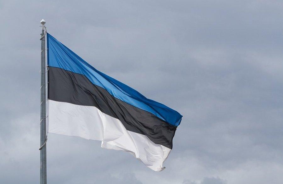 Захарова резко отреагировала на попытки Эстонии замять убийство россиянина