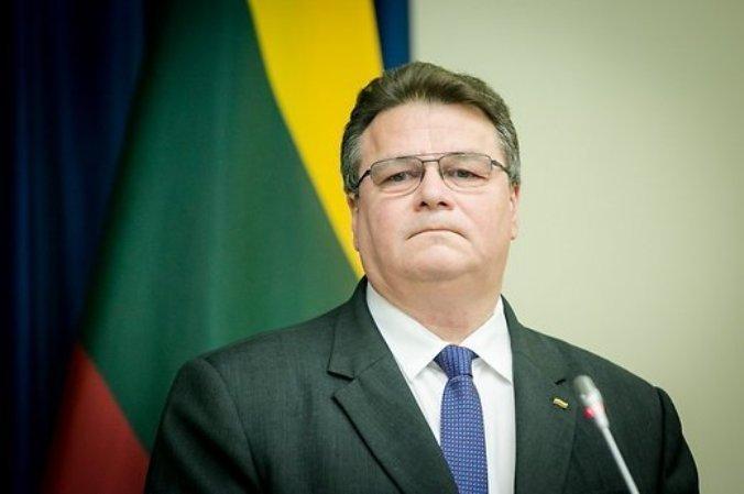 Глава МИД Литвы в Авдеевке «русскую агрессию» искал