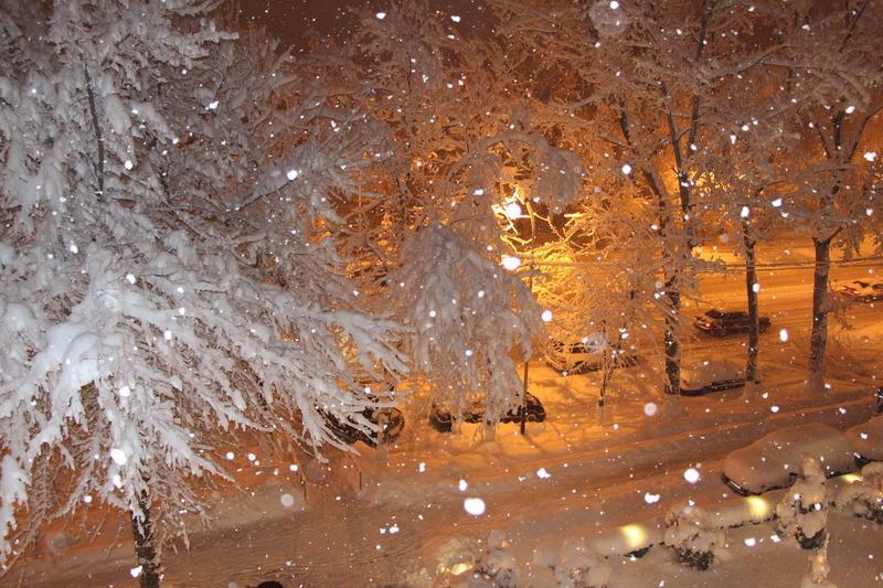 Сильный снегопад и мороз ждут Ставрополь 12 января