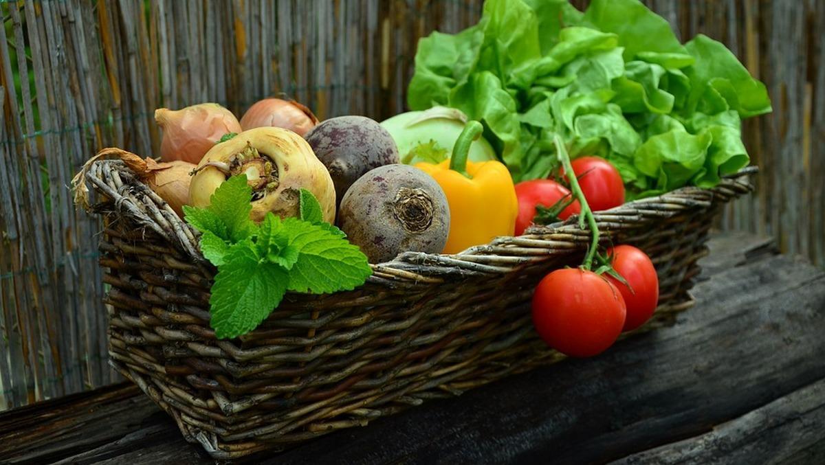 Как похудеть на 11 кг за 2 недели, не испытывая голода: оптимальная диета для эффективного и быстрого похудения
