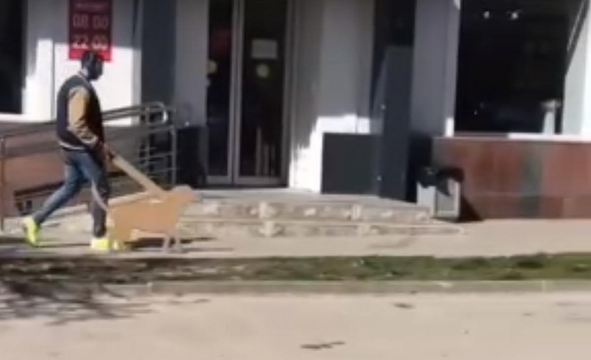 Выгул картонной собаки в Ростове-на-Дону