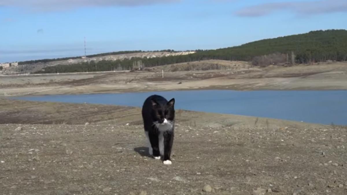 В Крыму оценили запасы воды в хранилищах Симферополя