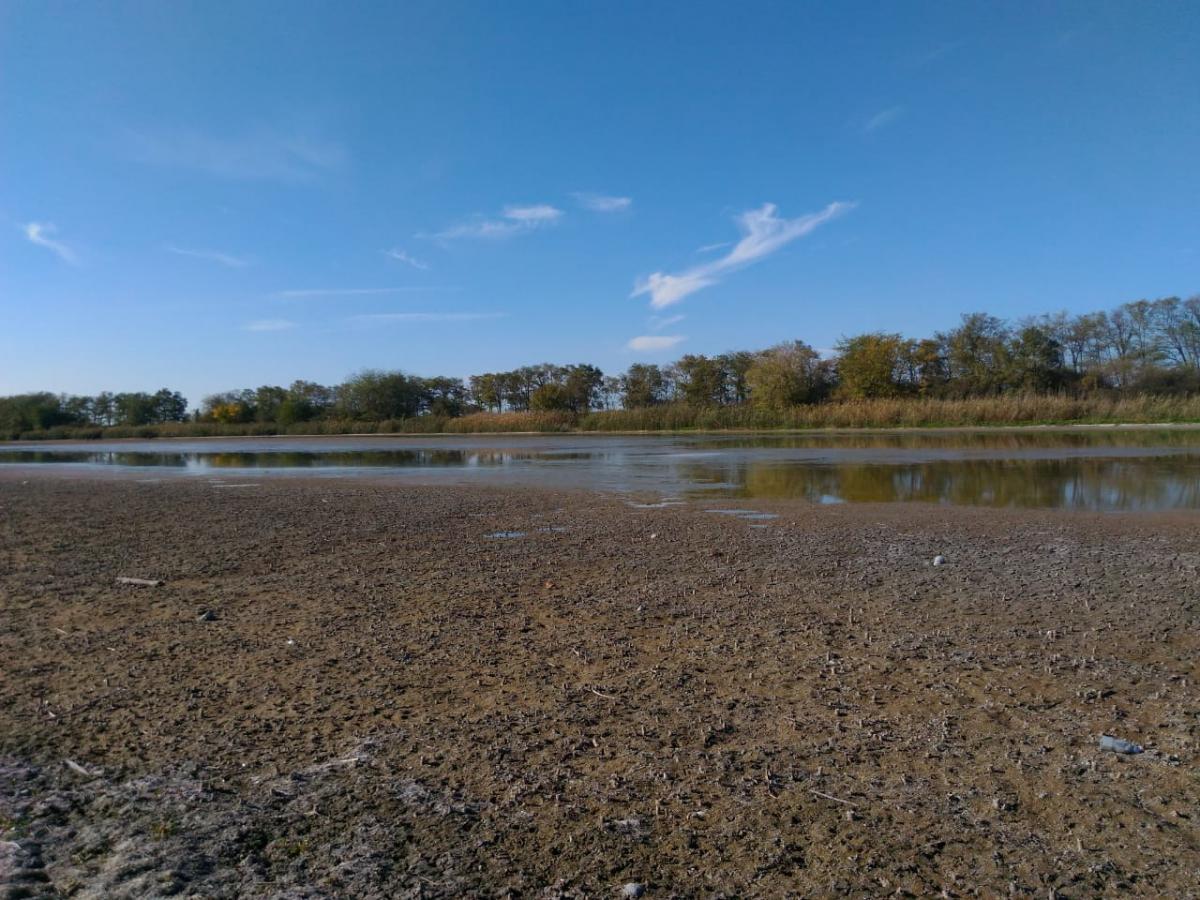 Пересыхающие реки в Тимашевском районе: получен ответ администрации