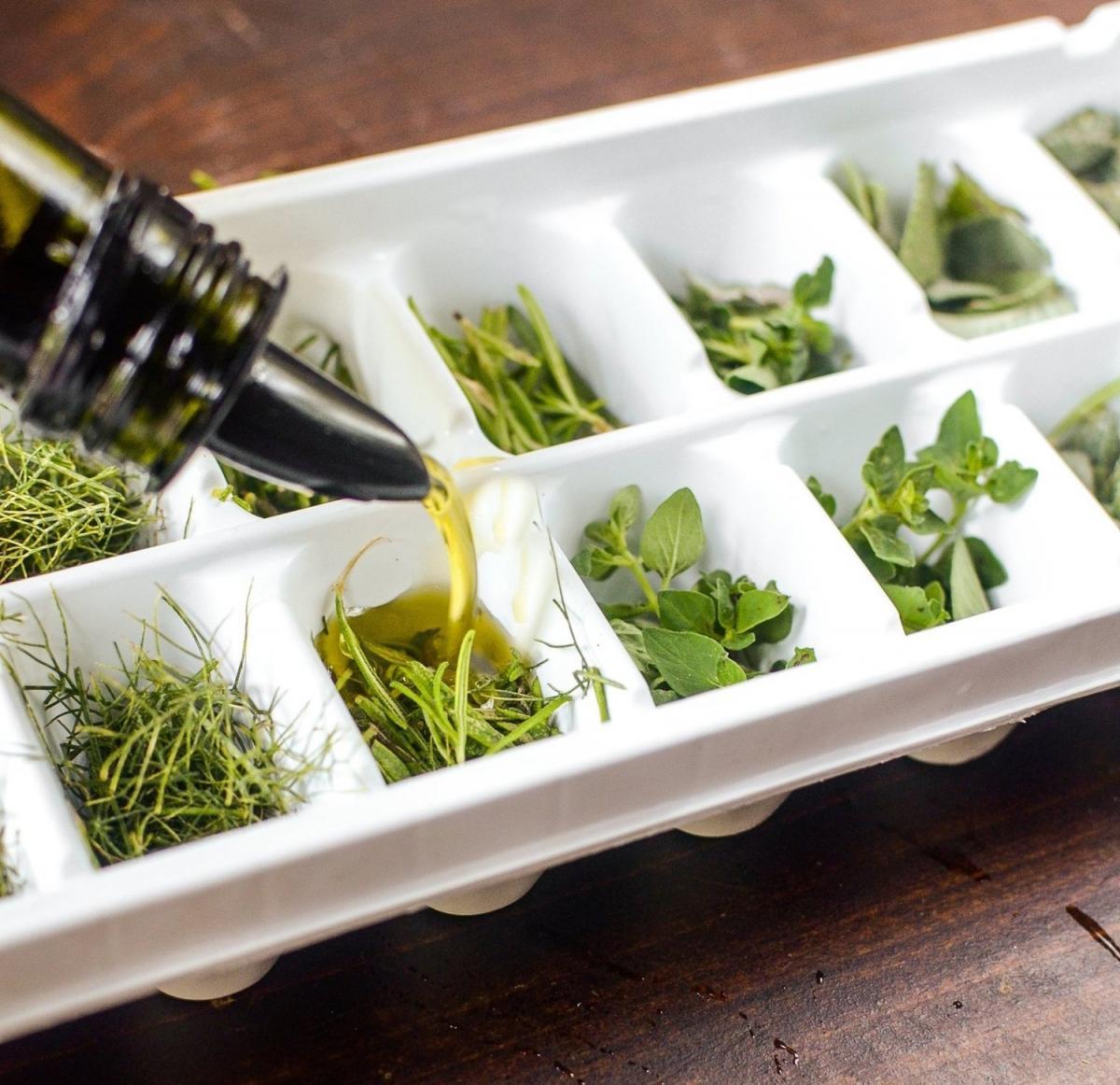 Как заготовить зелень на зиму и сохранить максимум витаминов: 3 способа для ленивых