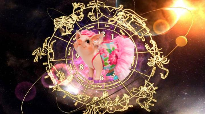 Гороскоп на 2019: какие сюрпризы приготовила Жёлтая Свинья для каждого знака Зодиака