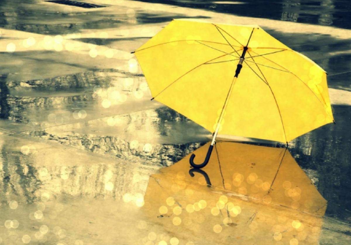 Зонт ливень осень