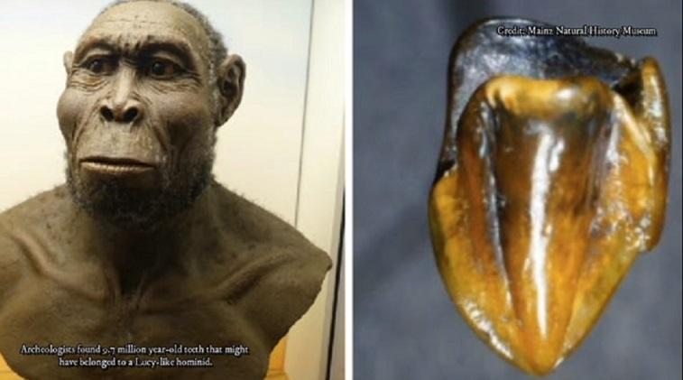 Находка археологов в Германии способна перевернуть историю происхождения человечества