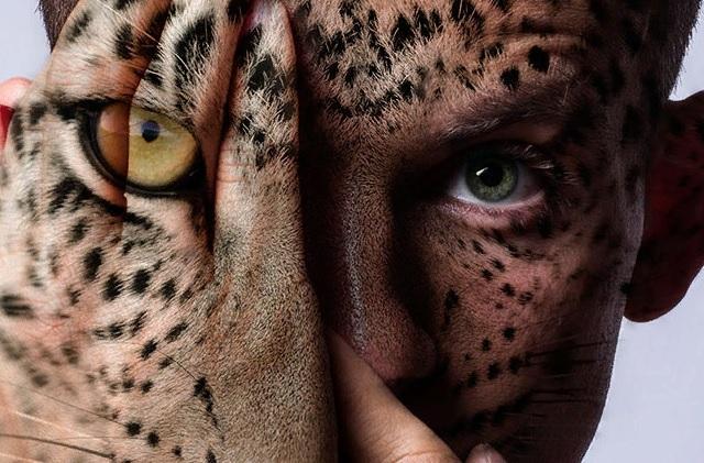 Нумерология рождения: какой зверь живет внутри каждого из нас