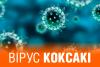 Вся правда о вирусе Коксаки в Турции: чем может обернуться российский «пофигизм»